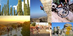 Tucson, AZ- What are you doing this weekend? Home! Good ideas for fun things to do in Tucson