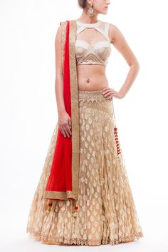 Absolutely gorgeous sequined blouse paired with Gold Net Lehenga with sequined motifs paired with Red Net Dupatta.