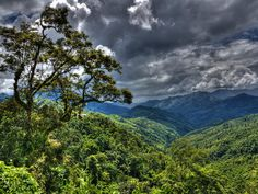 Visit the seven sisters in the north east! Mizoram's natural beauty is breathtaking
