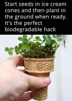 Gardening Hack