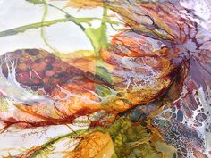 Detail33-W | Flickr - Photo Sharing! Encaustic painting by Alicia Tormey