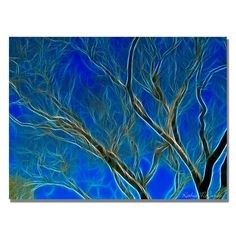 'Big Tree' by Kathie McCurdy Graphic Art on Canvas