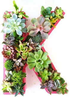 Succulent letter - cool garden idea with J or Evie's initials.