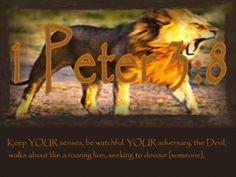 1Peter 3:8