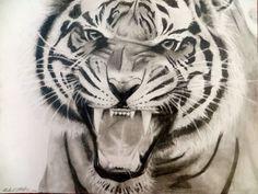 9x12 tiger roar drawing in pencil more tattoo ideas 9x12 tiger ...