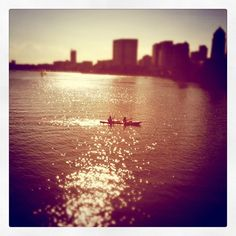 charles river, boston, ma. photo by caroline o'donnell.