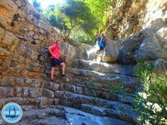 Prices for apartments on Crete prices in Crete Hiking Rozas Gorge on Crete 2022 Crete Greece, Painting, Apartments, Hiking, Holiday, Hiking Trails, Walks, Vacations, Painting Art