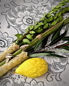 ~J    Sukkot...read about it in your Scriptures.