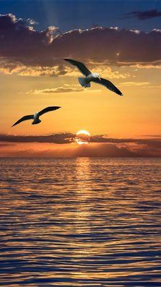 10 Stunning Shots of Sunrise and Sunset Amazing Sunsets, Amazing Nature, Beautiful Nature Wallpaper, Beautiful Landscapes, Nature Pictures, Beautiful Pictures, Moon Pictures, Beautiful Sunrise, Sunset Photography
