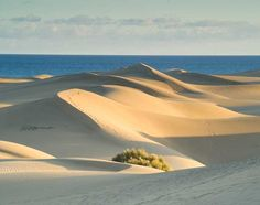 Great Dune of Pyla, France - Known in french as la Dune du Pilat, the Great Dune of Pyla is the largest sand dune in Europe.  Located in La Teste-de-Buch in the Arcachon Bay area.  Pyla is the name of the closest town, Pyla-sur-Mer.     The dune is about 60,000,000 meters cubed, measuring around 500 meters wide (from east to west) by three kilometers long (from north to south), and its height is 107 meters above sea level.