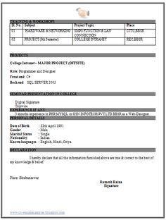 IT Engineer Fresher Resume (2)