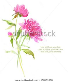 Painted watercolor card with pink peonies and place for text by lozas, via Shutterstock