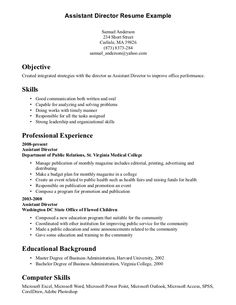 Best Ideas Profile Resume Examples  Resume Example