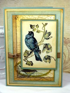 Signature Style by BeckyTE - Cards and Paper Crafts at Splitcoaststampers