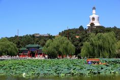 Beihai Park; it was a beautiful day when I went here, and the environment was so fun--everyone was dancing and singing.