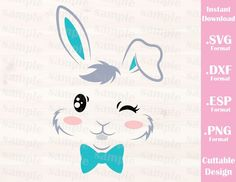 Easter Bunny Boy, Baby, Kid, Cutting File in SVG, ESP, DXF and PNG Format for Cricut and Silhouette