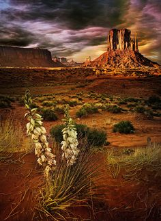 colour my world Monument valley Utah.