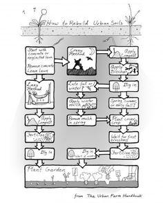 Backyard Feast: How to rebuild urban soils (Diagram) | Ballard News-Tribune