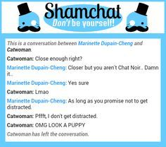 Image result for shamchat miraculous ladybug