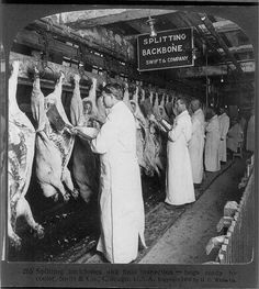 Chicago meat inspection swift co 1906