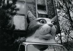 cat truck  -    From Viktor Kolář: Ostrava