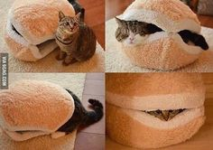 Must.Have! CatBurger!