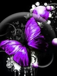 GIPHY is your top source for the best & newest GIFs & Animated Stickers online. Find everything from funny GIFs, reaction GIFs, unique GIFs and more. Blue Butterfly Wallpaper, Orange Butterfly, Butterfly Pictures, Butterfly Flowers, Beautiful Butterflies, Halloween Imagem, Gif Lindos, Art Papillon, Butterfly Kisses