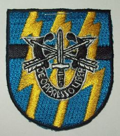 Special Forces Group Flash Patch with Crest SFG Military Patch