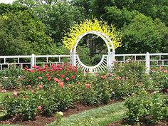 The Missouri Botanical Garden boasts two rose gardens with over 2,700 individual plants!