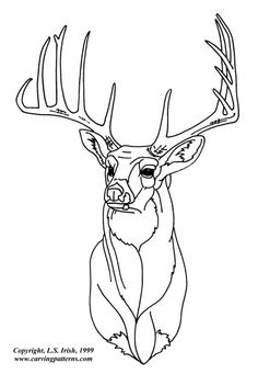 Deer Stencil | White Tail Deer Pattern Package - World of Patterns