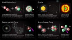 Fundamental Forces of Nature Weak Nuclear Force Strong Nuclear Force Electromagnetic Force Gravity Nuclear Force, Science Images, In Vivo, Mind Blowing Facts, Academy Of Sciences, Continuing Education, Mind Blown, Discovery, Physics