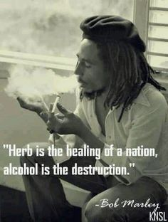 alcohol enhances the ego which promotes violence - herb enhances altered states which leads to meditation, insight and peace