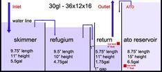 Sump design B - sump/fuge/ato design Saltwater Aquarium Setup, Aquarium Sump, Sea Aquarium, Saltwater Fish Tanks, Aquarium Design, Marine Aquarium, Freshwater Aquarium, Diy Aquarium Filter, Marine Tank
