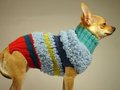 EL CIRCO  luxury brand la bamba dog sweater