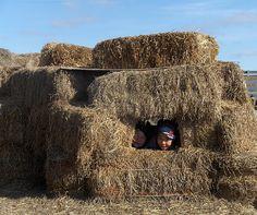 Farm Life – 2010 Capture the Heart of America Photo Contest