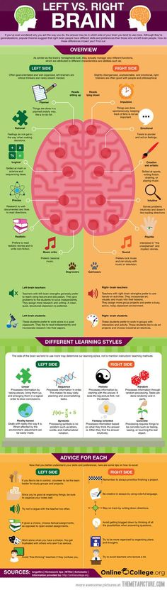 Left brian Right brain functinality #Infographic  www.socialmediamamma.com