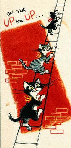 Vintage Greeting Card Cats Climbing A Ladder