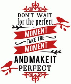 Silhouette Design Store - View Design #73487: don't wait for the perfect moment phrase