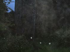 Kilcrea Castle and Abbey Ghost Hunting, Paranormal, Irish, Castle, Celestial, Outdoor, Outdoors, Irish People, Ireland