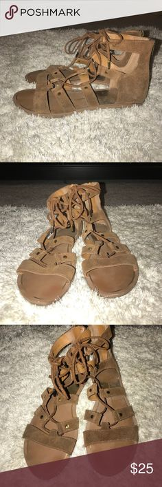 Dolce Vita Jasmyn gladiator sandals Brown suede gladiator lace up sandals with zippers on back. Dolce Vita Shoes Sandals