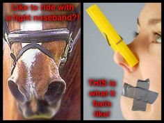 What is even the point of a tight nose band? To keep the horses mouth closed? Maybe you shouldn't ride in such a harsh bit and take the time to work with your horse ASS HOLE! Mercy For Animals, Save Animals, All About Horses, Stop Animal Cruelty, Horse Quotes, Beyond Words, All Gods Creatures, Show Jumping, Horse Girl
