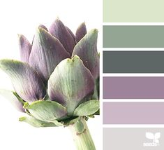 Design Seeds color palettes … posted daily for all who love color. Purple Color Schemes, Purple Color Palettes, Color Schemes Design, Paint Color Schemes, Green Colour Palette, Bedroom Color Schemes, Bedroom Colors, Color Combos, Decorating Color Schemes