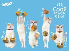NyaRan, Japan's Travel Agency Spokes-Cat