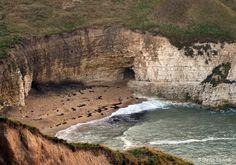 Coastal Chalk Cliffs | ... yorkshire coast Flamborough Head.sea cliff. stayed 2013 in van right on this cliff edge.