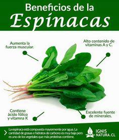 Beneficios de la Espinacas