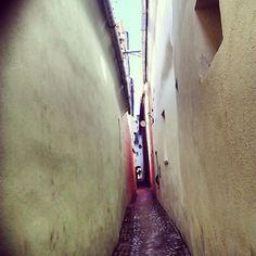 #brasov #stradasforii @lorelei_lo