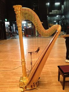Harp. It's belongs to the civic hall of Mie prefecture.