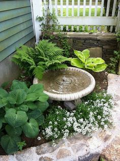 20  PLAIN FRONT YARD LANDSCAPING IDEAS FOR YOUR GARDEN SPACE - Page 6 of 21 Small Front Yard Landscaping, Landscaping With Rocks, Backyard Landscaping, Landscaping Design, Small Patio, Patio Design, Backyard Ideas, Small Front Yards, Florida Landscaping