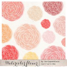 Watercolor flower ranunculus by burlapandlace on @creativemarket