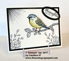 Candace J created this pretty card for our Black and White with a Pop of color swap. She used the Best Birds stamp set but also added elements from the Touches of Texture and Wherever You Go sets. She stamped everything in Black ink. Isn't that gorgeous bird colored beautifully? I believe she used Watercolor pencils and a blender pen and finished it with a touch of Wink of Stella on the wings. It's just lovely Candace! You can see...